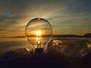 Электрика: пускатели,  контакторы,  выключатели,  лампы,  светильники.