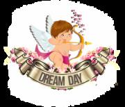 Студия организации праздников Dream Day