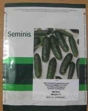 Подаю семена  SEMINIS